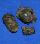 Fragments of a wooden bowl