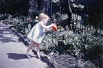 Child watering flowers in Grassmarket Nursery School