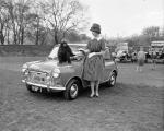 Dispatch Concours D'Elegance in Holyrood Park Edinburgh - Miss Tessa Pains and a monkey beside a Morris Mini Mission