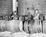Kilmarnock - Johnnie Walker Whisky Blending plant - Workers draw whisky into casks