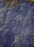 Pictish Symbol Stone, Brough Of Birsay, Orkney