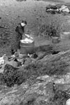 Dyeing wool at Loch Carnan, South Uist, in ?1936