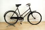 Bicycle, Argyle