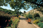 Culzean Castle, Walled Garden Pathway