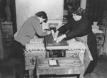 Egg packers at work in the premises of Orkney Egg Producers Ltd, Kirkwall, Orkney, c.1960