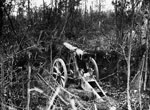 Abandoned field gun in Mametz Wood, France, during World War I