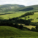 Agricultural landscape, north of Moffat, Dumfries & Galloway