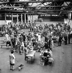 A view of a dog show at Waverley Market in Edinburgh