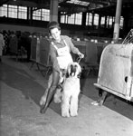 Dog show, Waverley Market - Edinburgh 1971