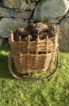 Basket of peats at the blackhouse, Arnol