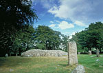 Clava Cairns (General view)