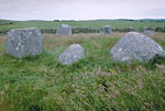Torhouse Stone Circle (General view)