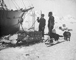 Two Men with Dogs and Sledge Carrying Cage of Penguins at Bow of Ice-Bound Ship