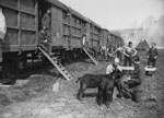 Accommodation in railway carriages, Western Front, France, during World War I