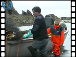 Salmon Coble puts to sea from beach at Armadale (video clip)